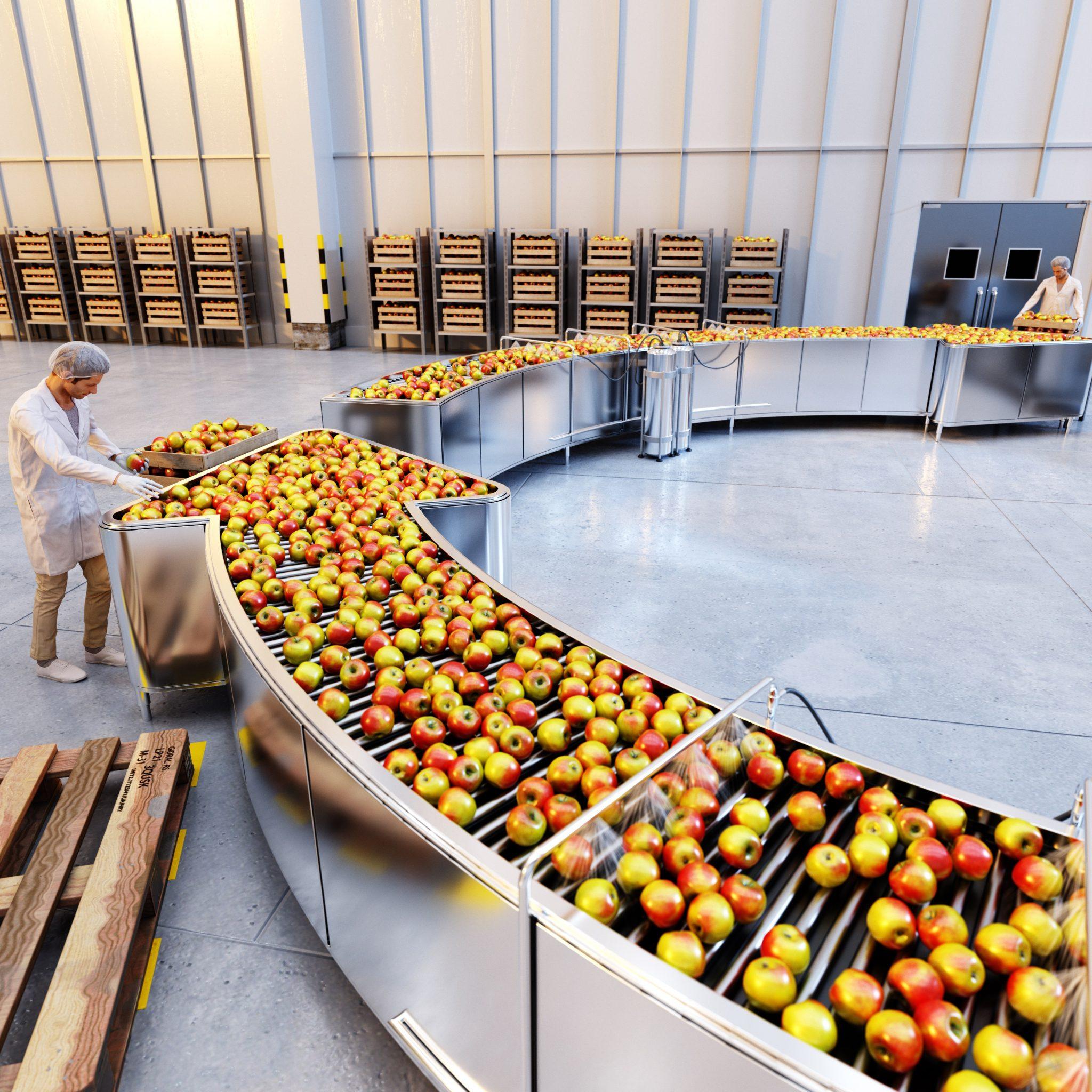 CGI Sustainability Conveyor Belt