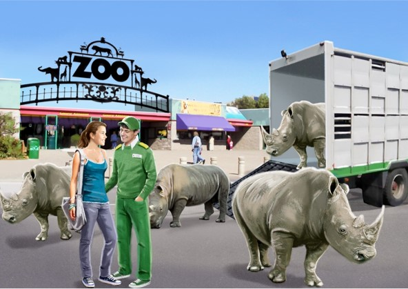 Zoo visual